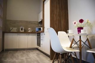 Deluxe Double Room Dioni Alissachni Kitchen